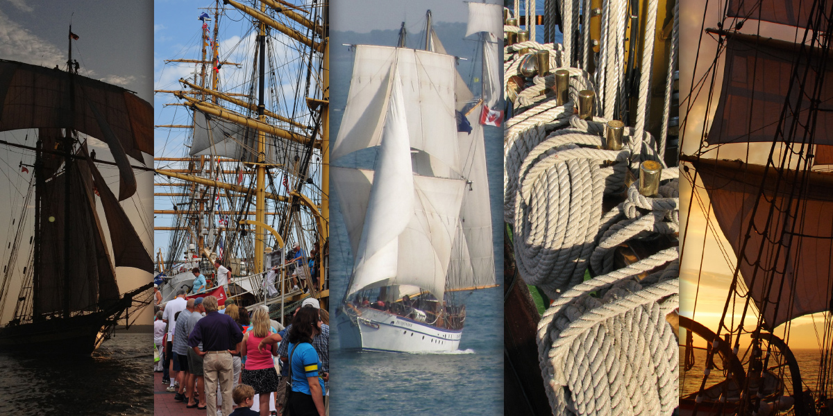 ... numerous special events, sail away excursions, music, food and fun in a  family friendly format. Galveston Island will serve as the first ...